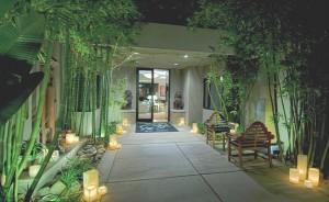 kathy ireland palm springs wedding venue