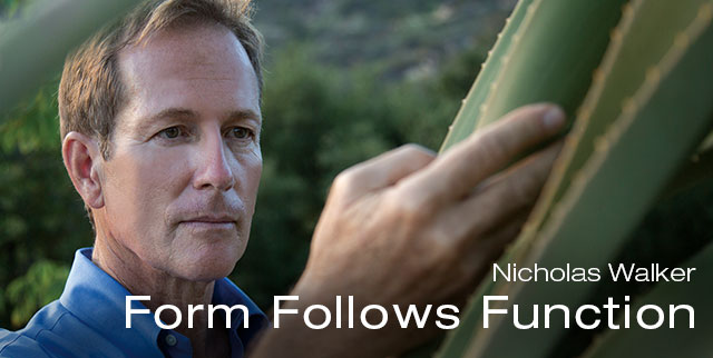 Form Follows Function: Nicholas Walker