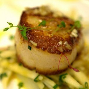 pan-seared-scallop