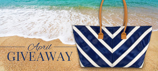 April 2014 – Harveys Seatbelt Bags Giveaway