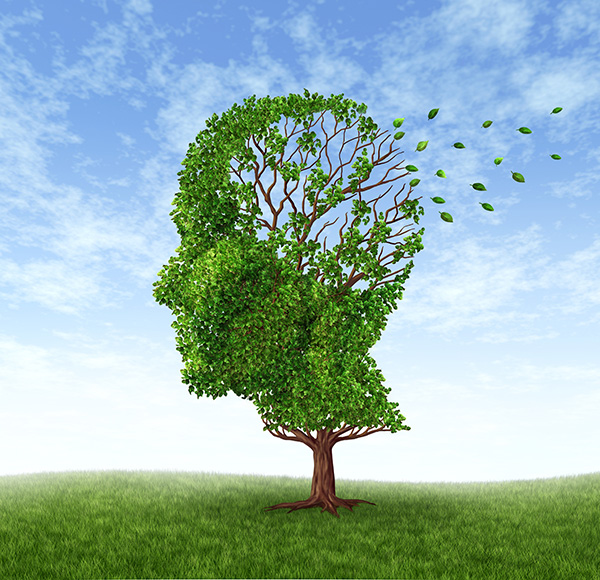 Alzheimer's Association – With Memory in Mind