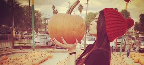 halloween_pumpkin_2014_wb_bnr
