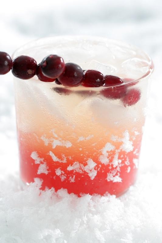 Cranberry + Vanilla Cocktail