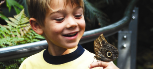 Boy-Butterfly-crop1