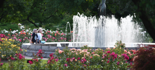 Floral-Showhouse-Fountain