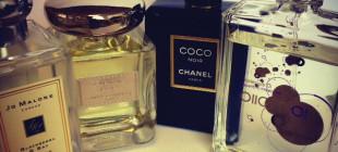 chapman_perfume_border_03