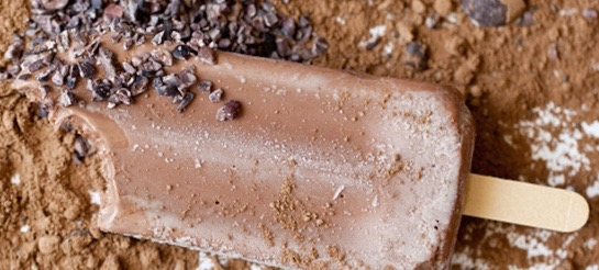 Life-Changing Recipe: Superfood + Protein Fudge Pops